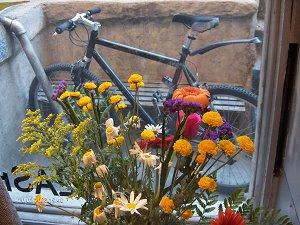 bikeandflowers